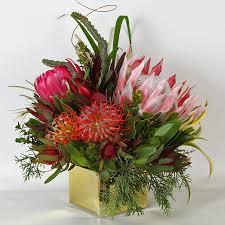 gift arrangements gem hawaiian protea flowers anuhea flowers protea