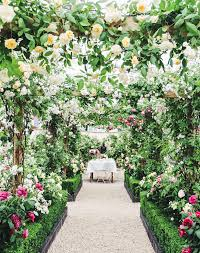 garden and flower show an inside look at the 2017 chelsea flower show in london chelsea