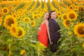 knoxville photographers knoxville photographers sunflower maternity session the jones