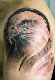 eagle meaning ideas designs traditional bald