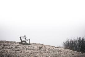 lonely bench at the end of the world free stock photo download