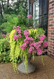 298 besten flower pots ceramic bilder auf pinterest gardening