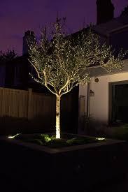 8 best garden inspiration images on landscape lighting
