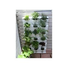 minigarden is suitable for growing fresh aromatic herbs in your