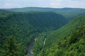 Pennsylvania Forest images Hunters anglers must lead charge to protect pa forests jpg