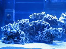 Aquascape Construction Epoxy 45 Best Aquascaping Images On Pinterest Aquascaping Reef