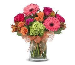 florist gainesville fl serendipity in gainesville fl floral expressions florist