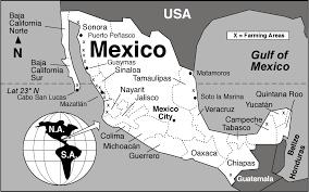 Map Of Ixtapa Mexico by Zihuatanejo Ixtapa Message Board Coconut Shrimp Sin Crema