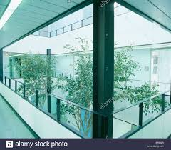 Modern Houseplants by Tall Houseplants In Atrium In Modern Office Building Stock Photo