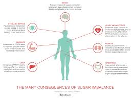the blood type diets sugar molecules and metabolism