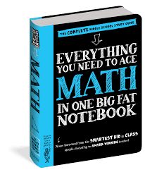 you need to ace math in one big fat notebook