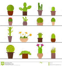 cartoon cactus plant in pots vector stock vector image 86247545