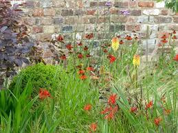 designing a vegetable wall garden hgtv