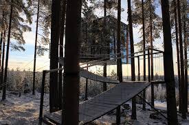 chambre dans un arbre un hotel dans les arbres