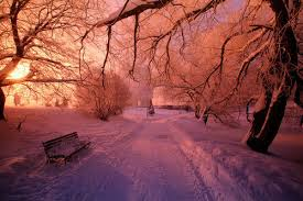 colorful winter day pictures photos and images for