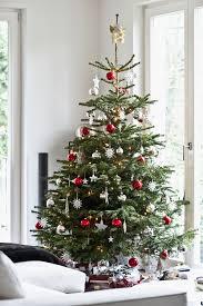 real christmas tree real christmas tree ideas christmas lights decoration