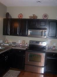 Modern Dark Kitchen Cabinets Kitchen Room Design Magnificent Home Furniture Kitchen Cabinet