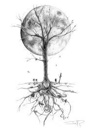 image drawing of a tree image de lil wayne ymcmb sebastian
