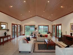 Ceilings Ideas by Cathedral Ceiling Ideas To Cover Popcorn Ceiling Modern Ceiling