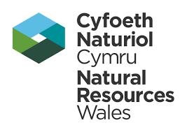 logo isuzu natural resources wales