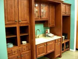 kitchen cabinet carcasses kitchen adorable cabinet making kitchen carcass cabinettreatsie