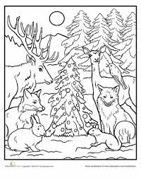 43 Best Woodlands Images On Pinterest Natal Activities And All Woodland Animals Coloring Pages