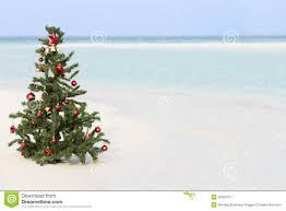 christmas tree on beautiful tropical beach stock image image