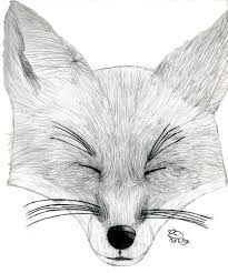 mar 21 2007 fox head 4 by migeyefoxe on deviantart