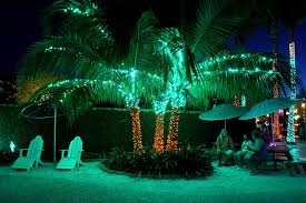 Pictures Of Christmas Lights by 10 Places To See Christmas Lights In The Tampa Bay Area Tbo Com