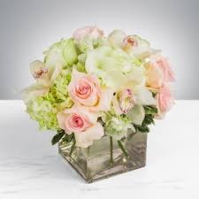 flower delivery sacramento hydrangeas flower delivery in sacramento tower florist