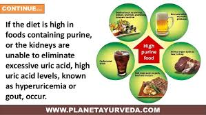 foods for uric acid patient read more articles guides doctor advices