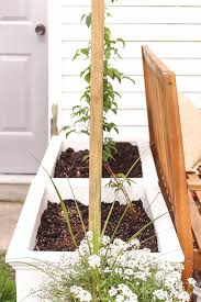 diy trellis planter love grows wild