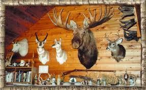 real bear skin rugs u0026 animal taxidermy for sale bill u0027s bear rugs