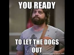 Who Let The Dogs Out Meme - you ready to let the dogs out youtube