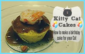 Kitty Cat Cakes How to make a birthday cake for your Cat