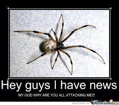 Spider Meme Misunderstood Spider Meme - misunderstood spider by kuksoolkarl meme center
