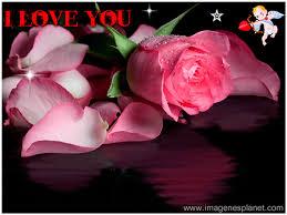 imagenes de amor con rosas animadas rosas animadas con movimiento y frases imágenes de amor con