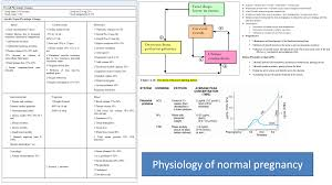 Nervous System Concept Map Medical Concept Maps Reproductive System