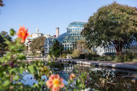brooklyn botanical garden year round indoor u0026 outdoor exhibits