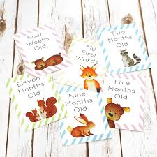 woodland cards for baby milestone events by betty bramble