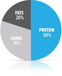 a beginner u0027s guide to losing body fat