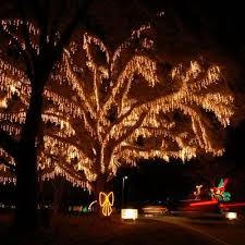 holiday festival of lights charleston top 10 holiday celebrations holiday festival lights and