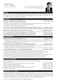 Sample Professional Resume by Writing A Professional Cv Template