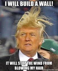 Wind Meme - i will build a wall it will stop the wind from blowing my hair