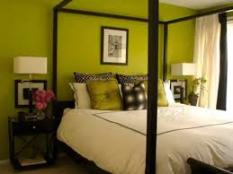 Black Canopy Bed Sage Green Bedroom Colours With Black Canopy Bed Therapy Bedroom