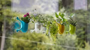livi the adorable little planters that stick to almost any
