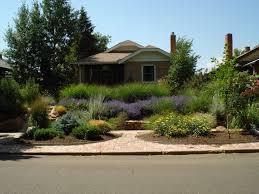 xeriscape front yard google search grassless lawns pinterest