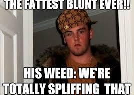 Meme Stoner - stoner guy weed memes