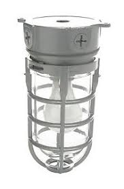 Explosion Proof Light Fixture by Explosion Proof Style Ceiling Mount Cage Light Fixture Retro