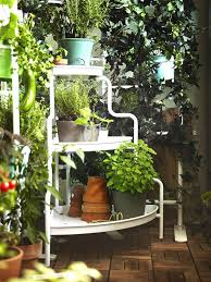 kitchen gardening ideas how to start a balcony kitchen garden complete guide balcony